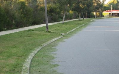 lawn-clippings-on-road